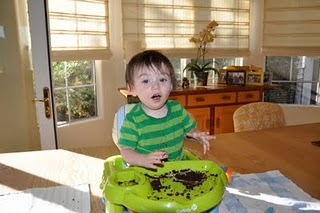 Loving a Vegan Cupcake