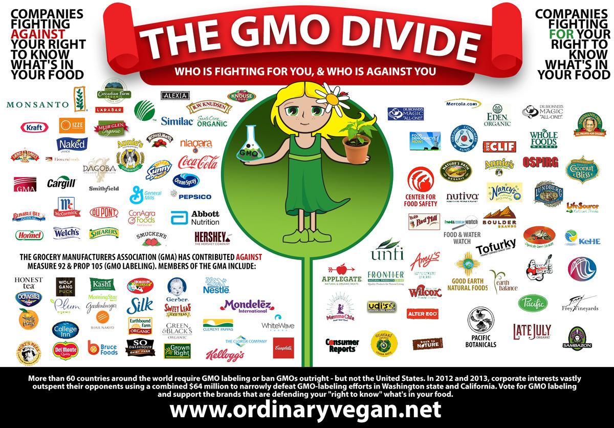 10107-GMO_Divide